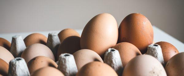 egg quantity ivf