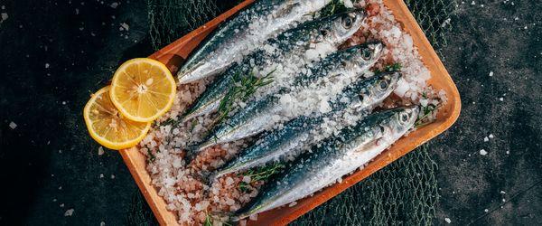 salt and tuna